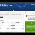 Affiliate Forex Program - Tips When Setting up One